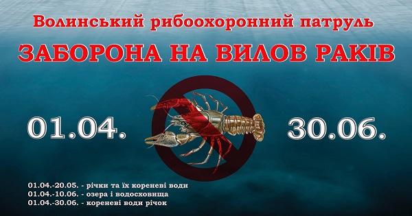 У Волинській області триває заборона на вилов раків