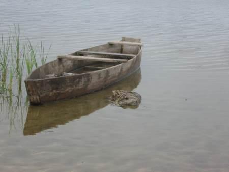 На озері Шині порушники завдали майже 3 тис. грн збитків, - Волинський рибпатруль