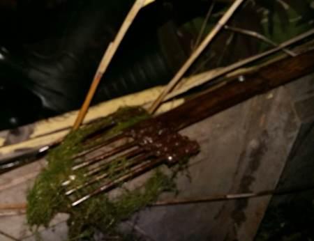 Протягом тижня на волинських водоймах вилучено 46 одиниць заборонених знарядь лову