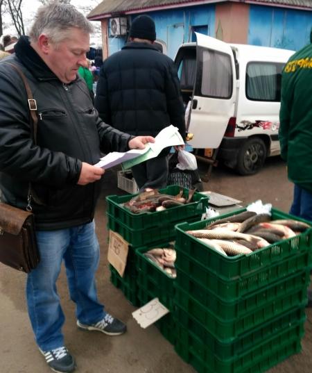 На Старовижівщині порушник завдав збитків на понад 1 тис. грн, - рибпатруль Волині